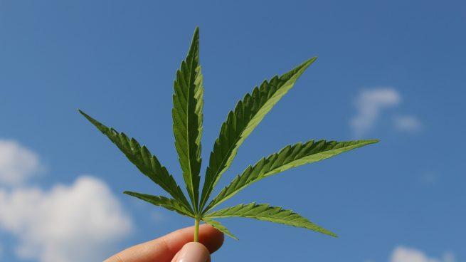 Autorizan el primer fármaco con derivado de cannabis en España