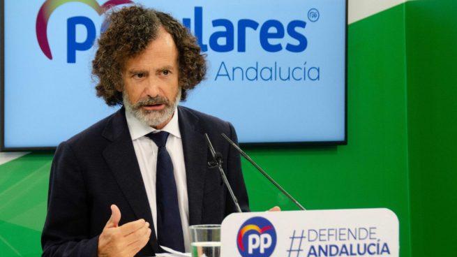 El portavoz adjunto del PP en el Parlamento de Andalucía, Pablo Venzal.