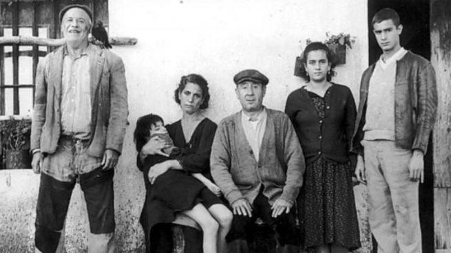 Desde 'Los Santos Inocentes' a 'La Colmena': Las mejores películas de Mario Camus