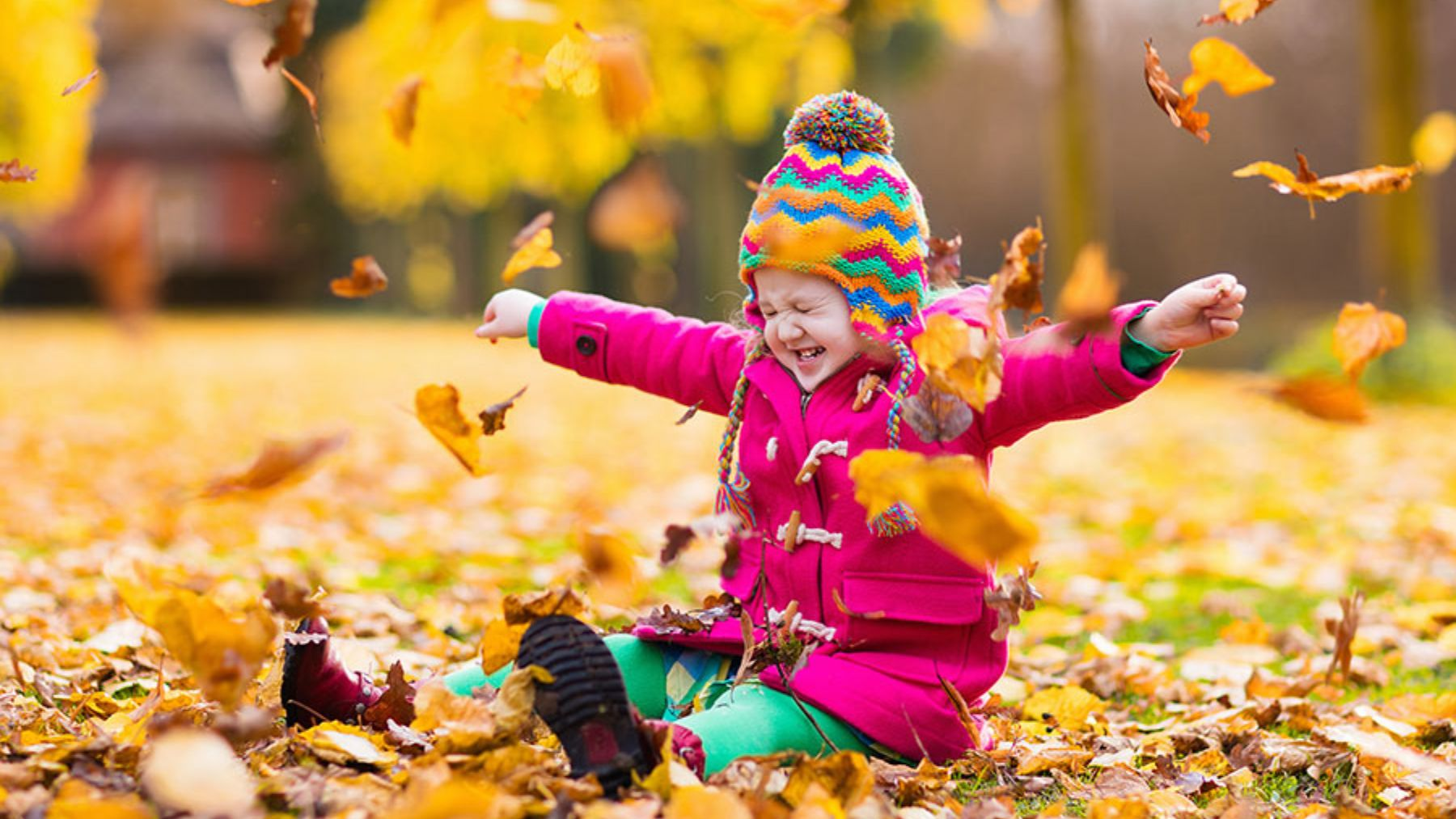 Descubre las mejores actividades para divertir a los niños en el parque en otoño