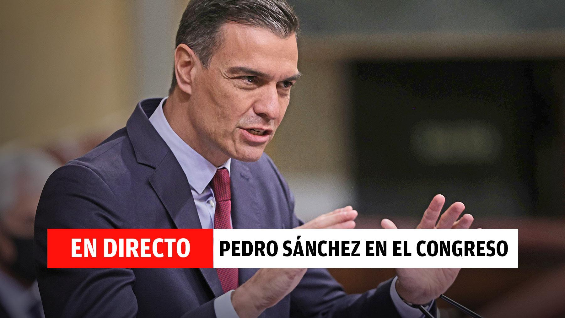 Pedro Sánchez en directo hoy en el Congreso.