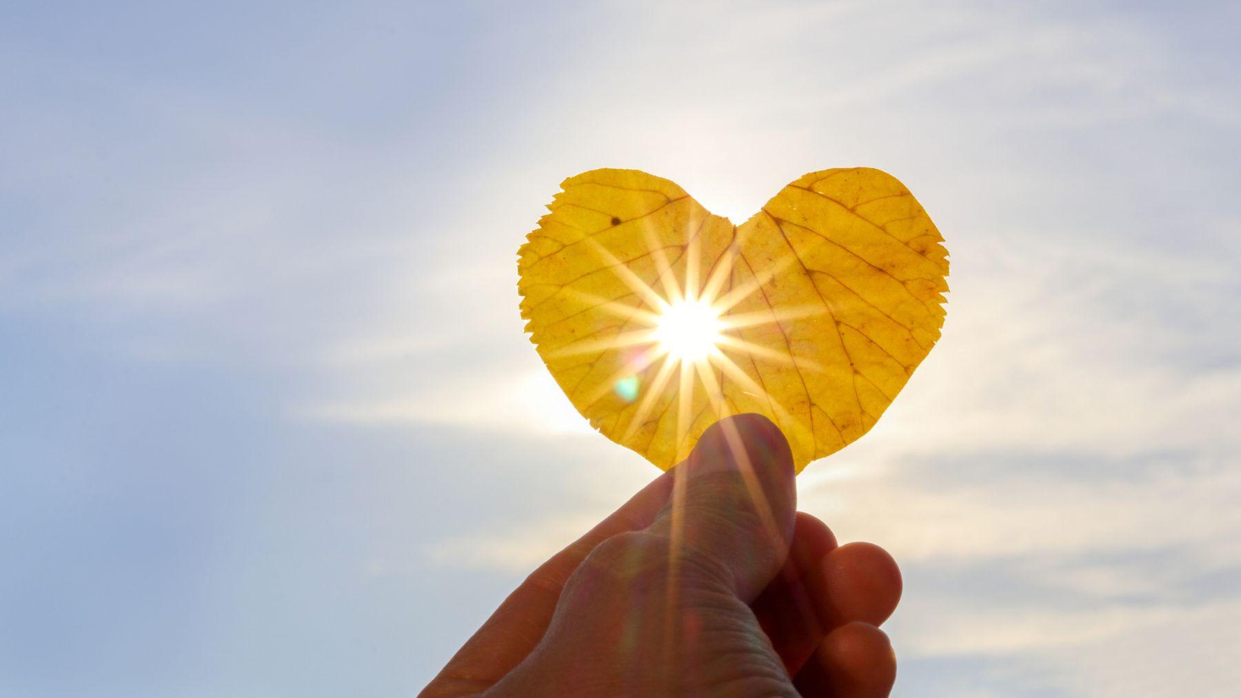 Descubrimos cómo nos beneficia la luz solar para nuestra salud