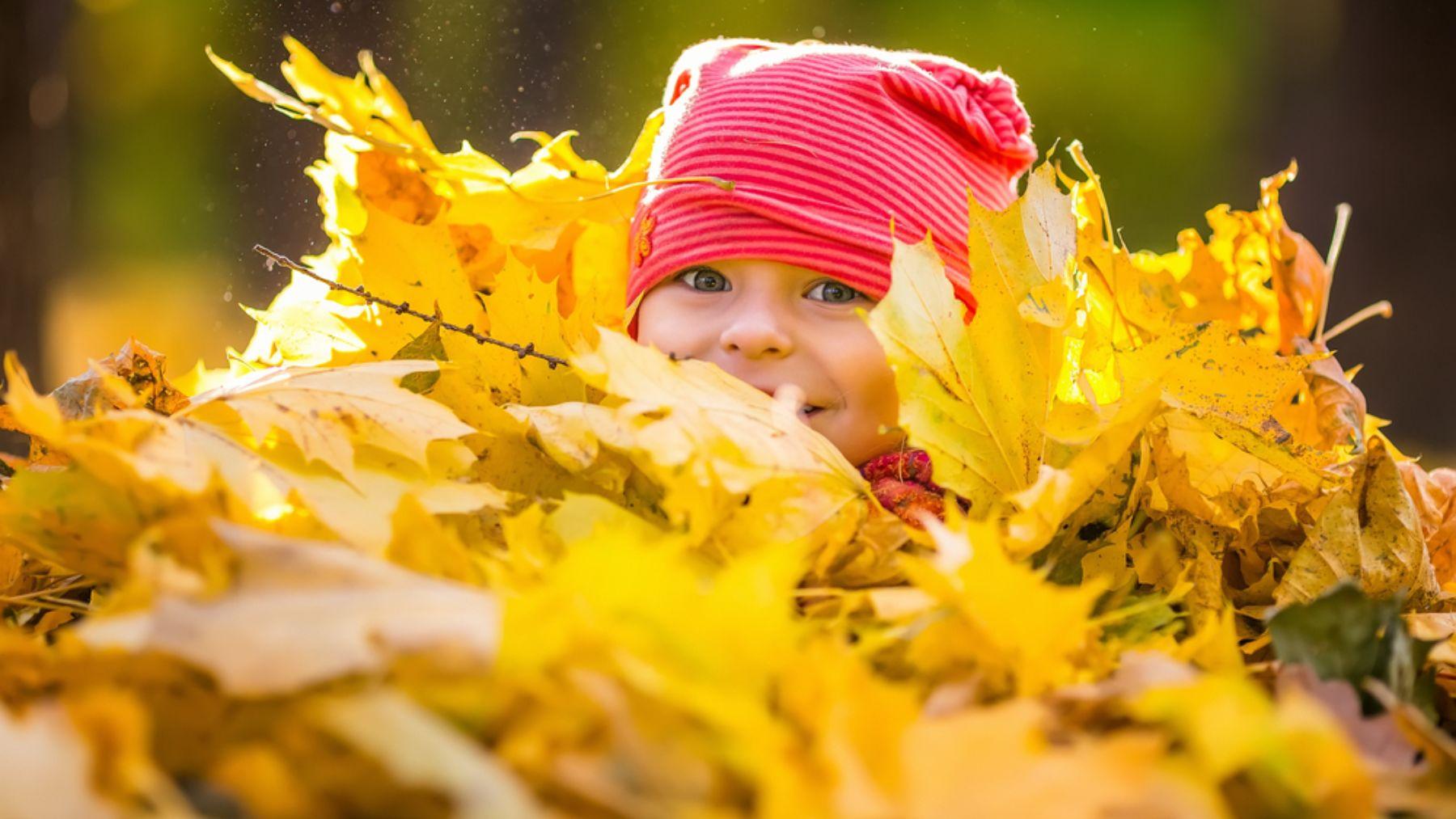 Descubre cómo hacer algunas de las mejores manualidades infantiles para este otoño con hojas