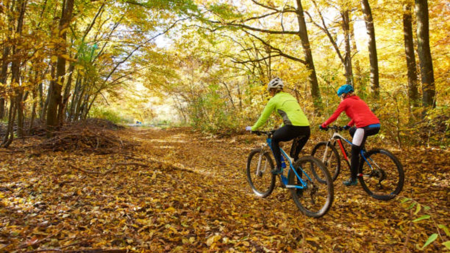 Pautas para gestionar bien el tiempo libre en otoño