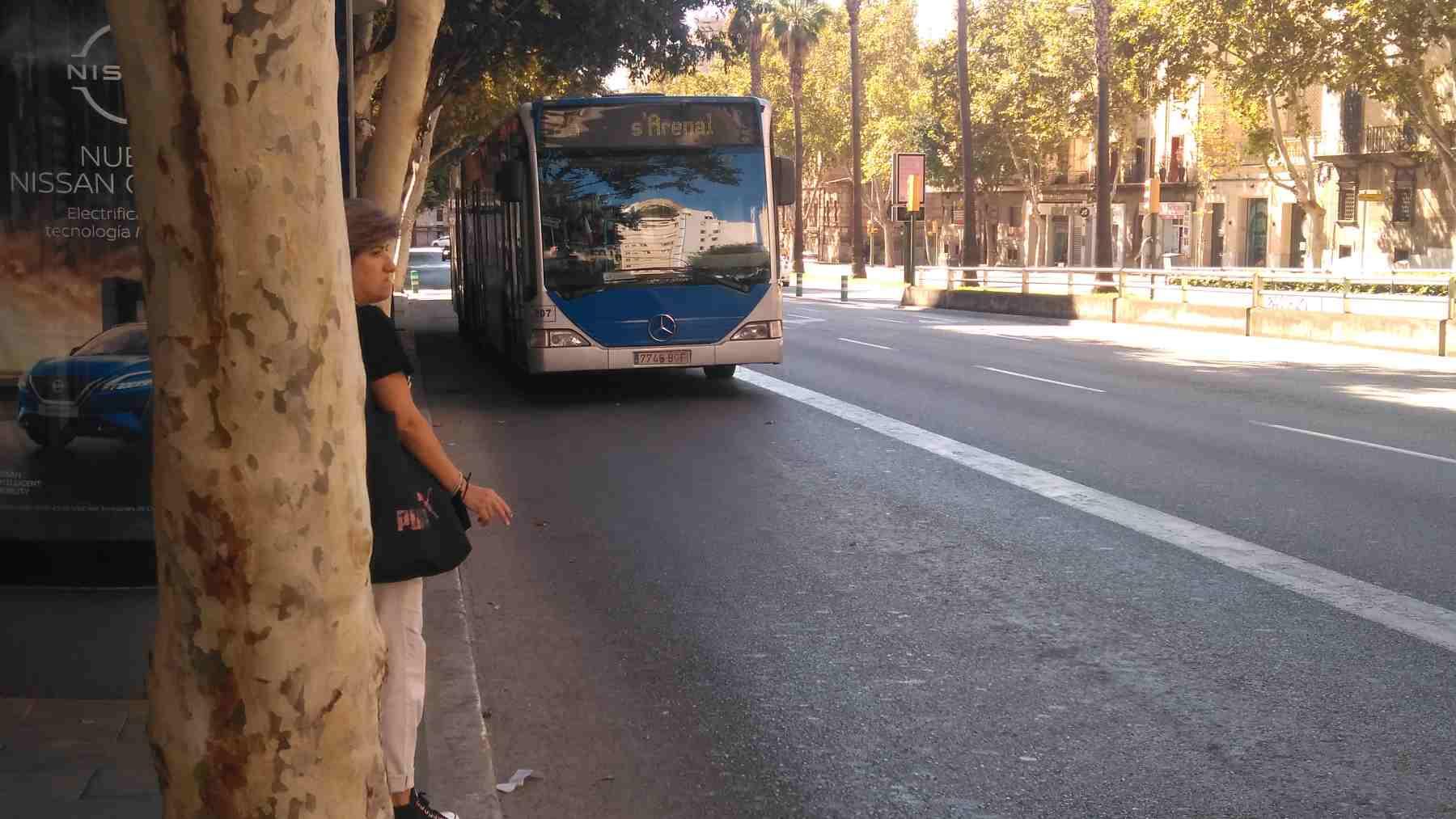 Autobús de la EMT de Palma.