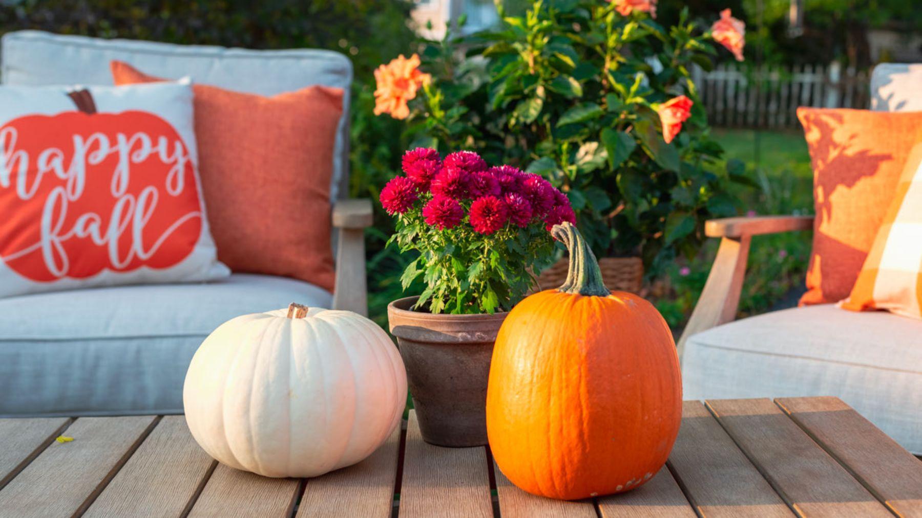 Tips y consejos para decorar la terraza en otoño
