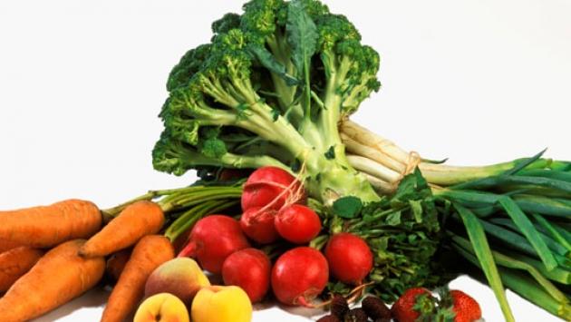 que es alimentos prebioticos