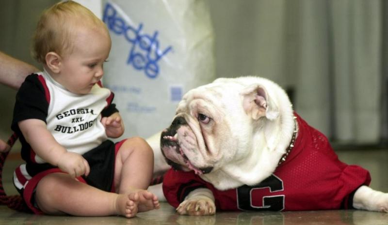 6 desventajas de tener mascotas en casas con niños