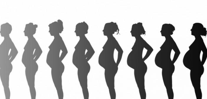 Calendario de embarazo: de la semana 18 a la 21