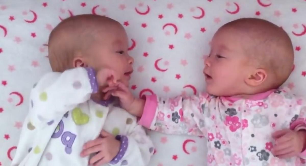 virales-bebes