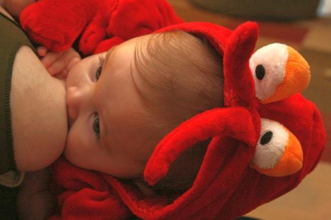lactancia-bebes