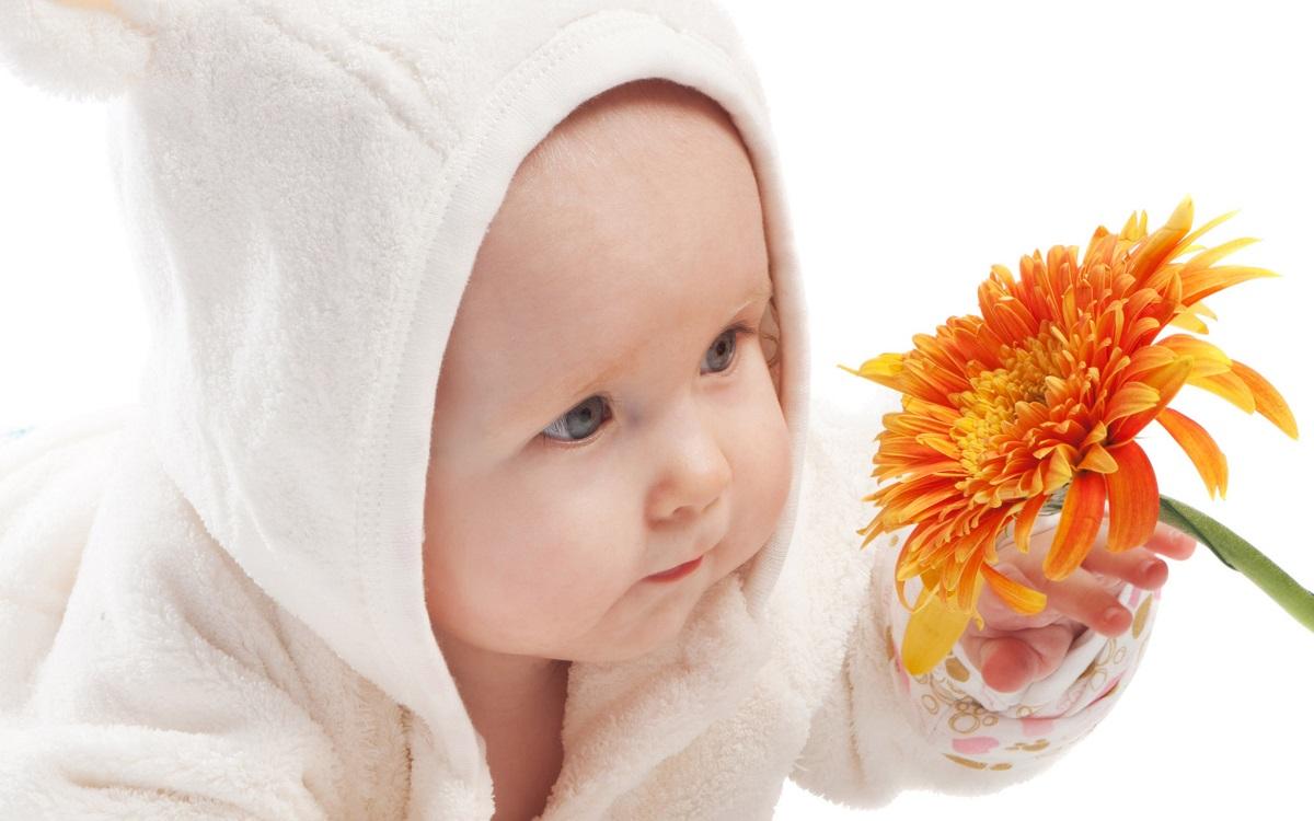 frances-bebe