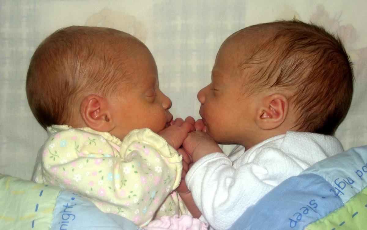 Un estudio establece que los partos múltiples deben adelantarse para seguridad de los bebés