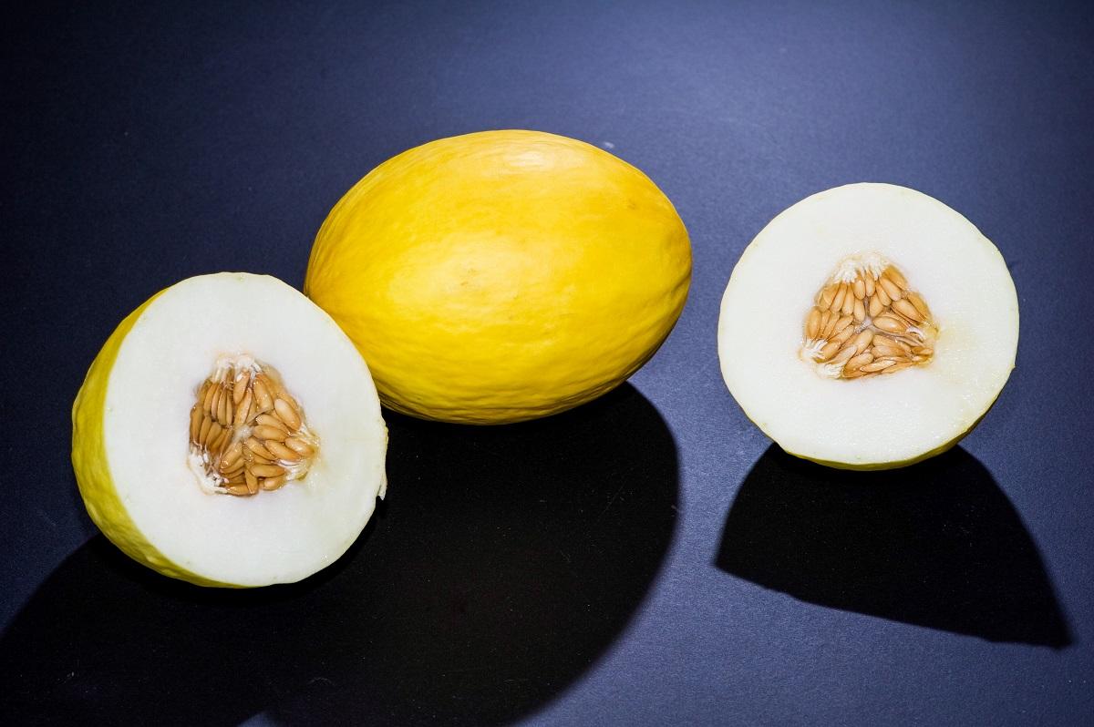 El melón, entre los mejores alimentos para embarazadas