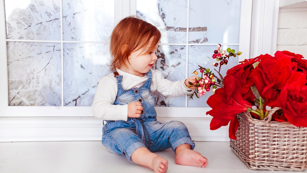 Las principales ventajas de plantar semillas con los niños
