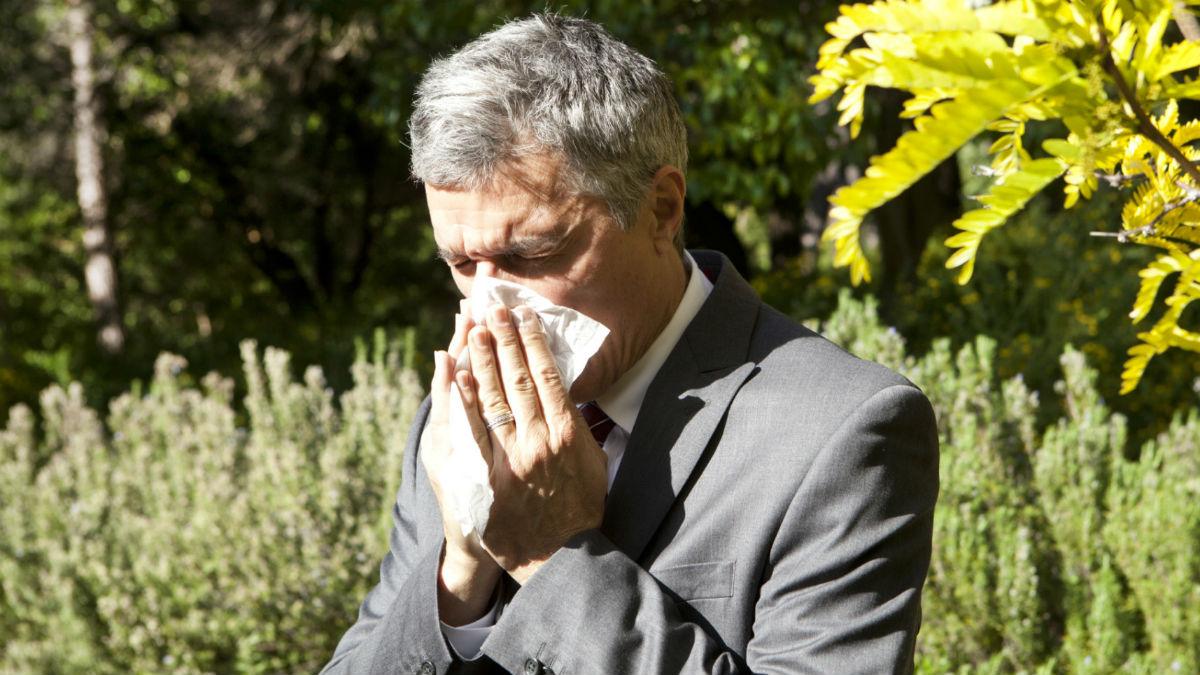 La llegada de la primavera trae consigo las temidas alergias, que pueden afectarnos a la hora de conducir, algo contra lo que sin embargo podemos luchar.