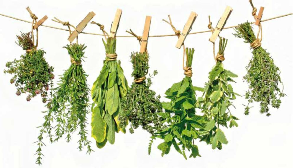 Como hacer vinagres aromatizados
