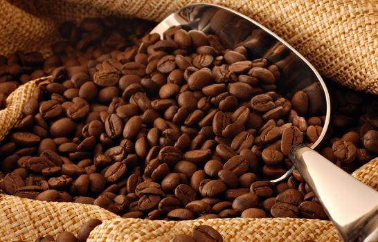 Licor casero de café