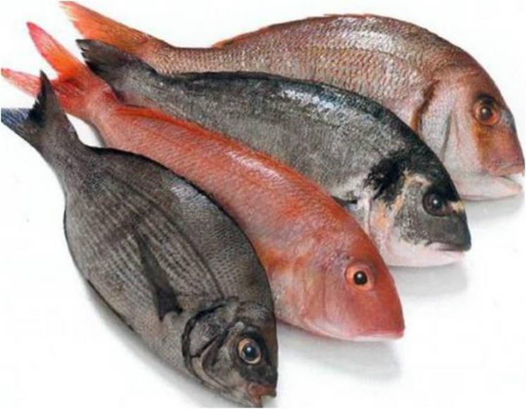 trucos pescado