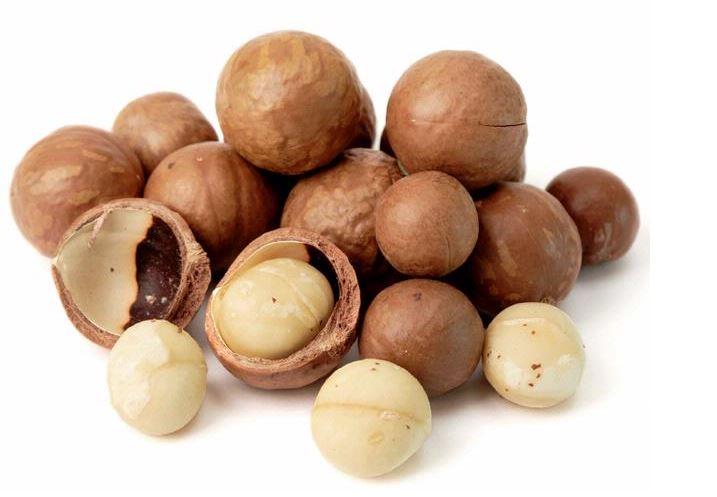Resultado de imagen de nuez de macadamia