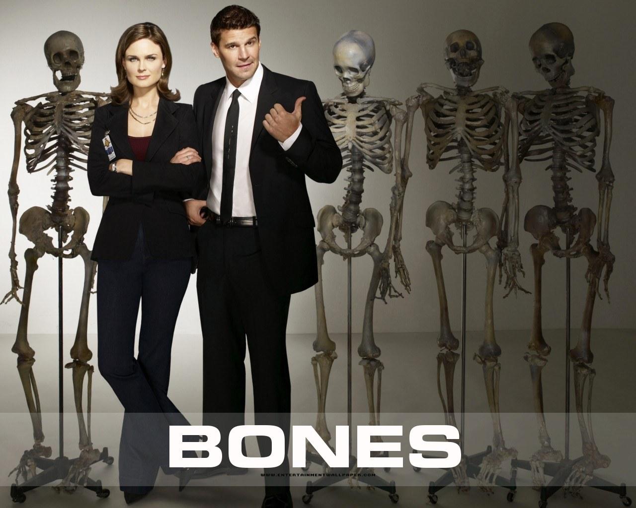 Ed Asner y Hal Holbrook estarán en la última temporada de Bones