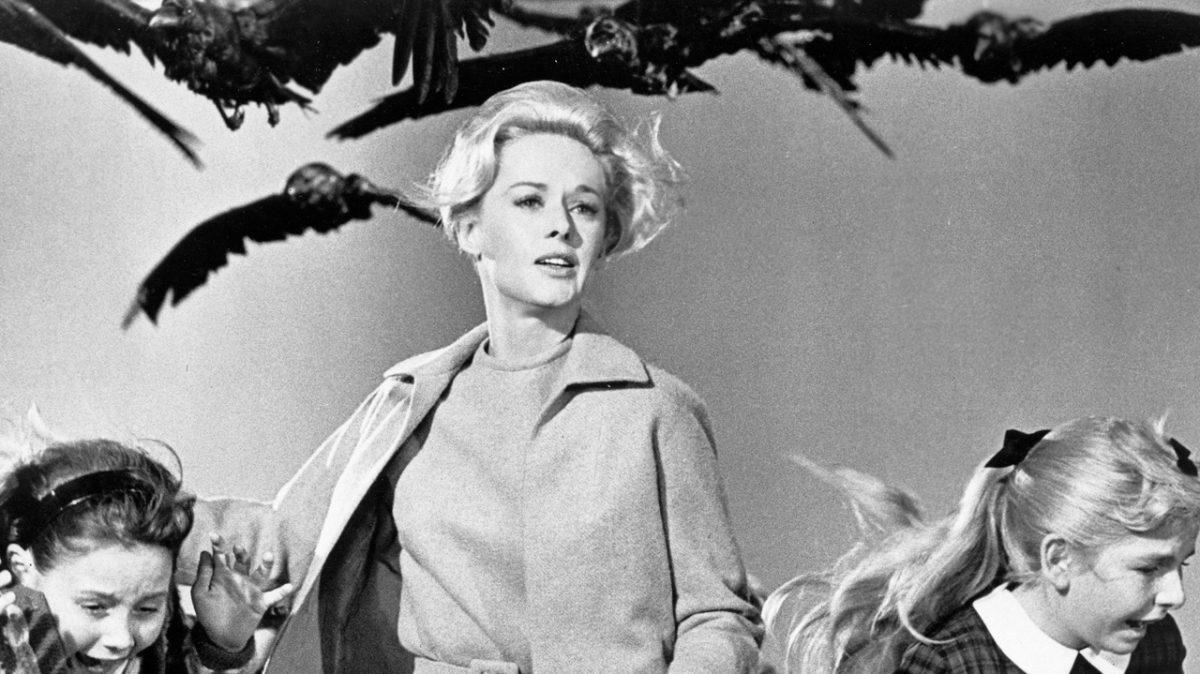 Los Pájaros de Hitchcock