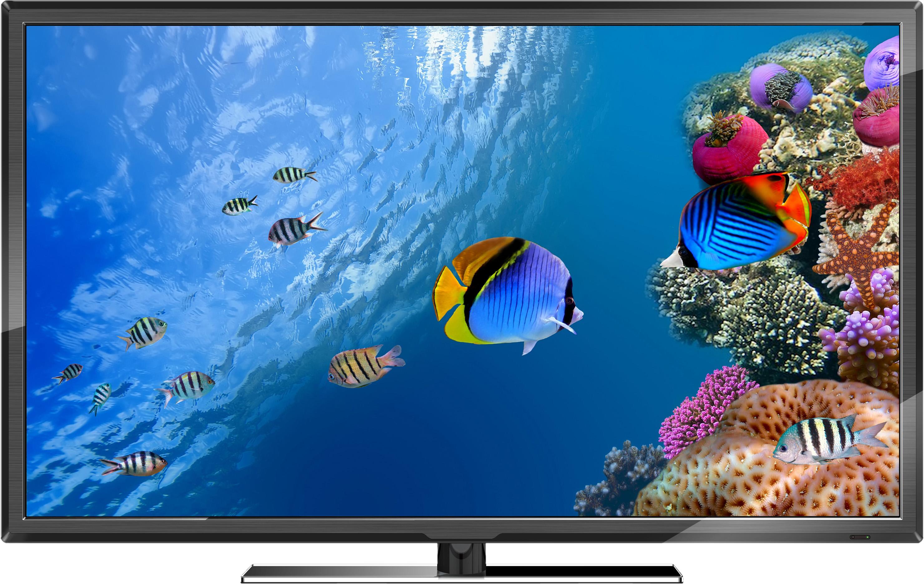 televisores-led
