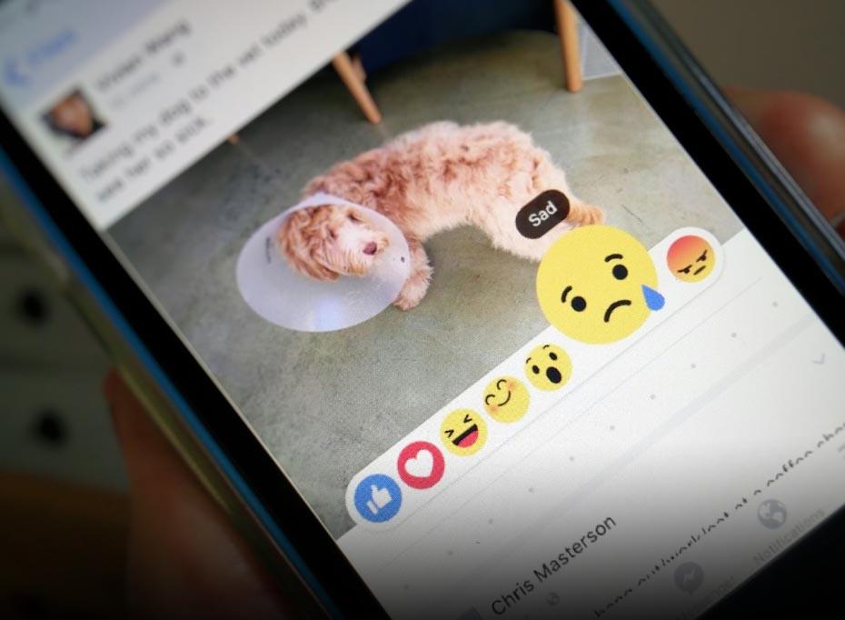 Facebooks-no me gusta grande