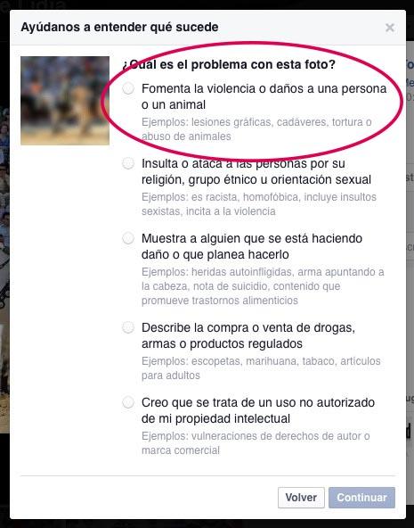 Facebook reportar toros-04