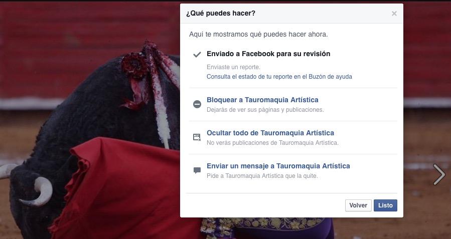 Facebook reportar toros-09