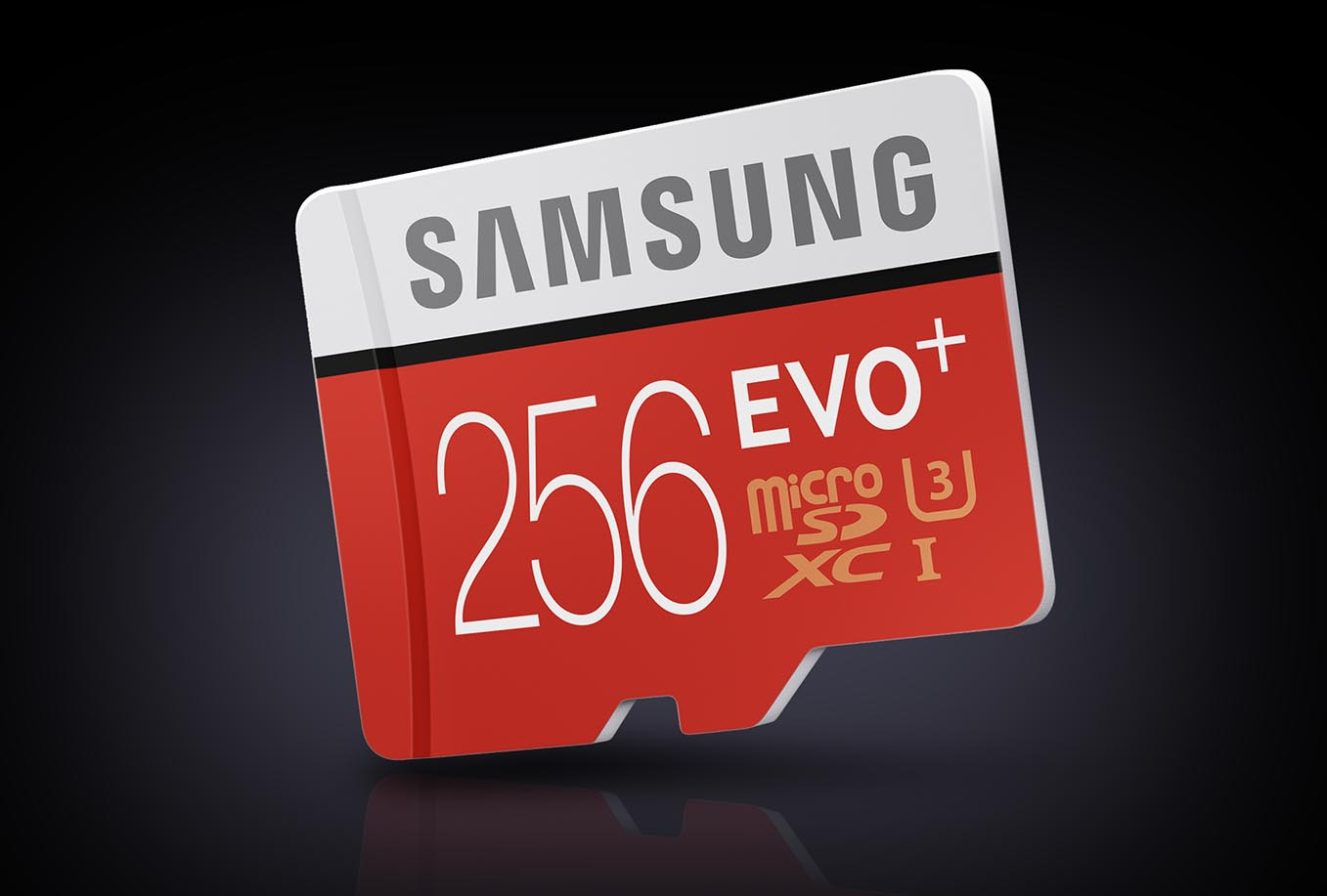 Micro SD Samsung 256 EVO+
