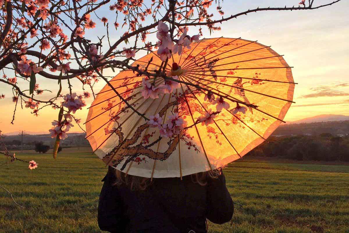Viaja a Japón gratis a cambio de una fotografía