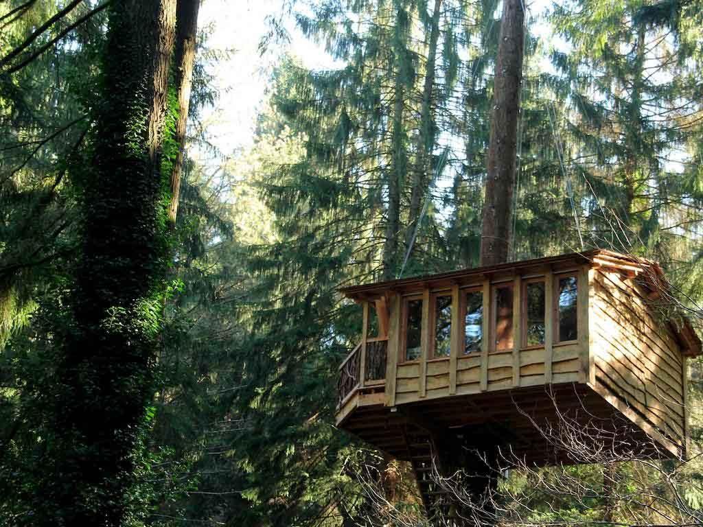 5 caba as en los rboles para dormir en plena naturaleza for Alojamientos cabanas en los arboles