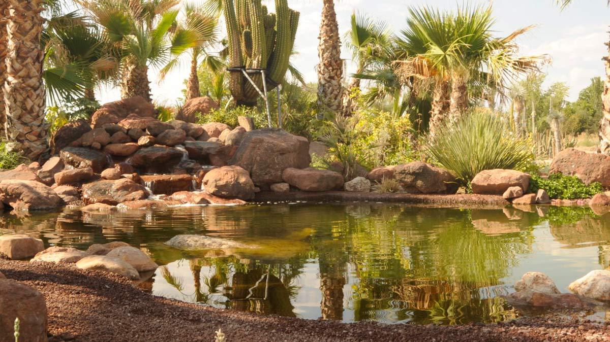 Desert City, el jardín de cactus más grande de Europa está en Madrid