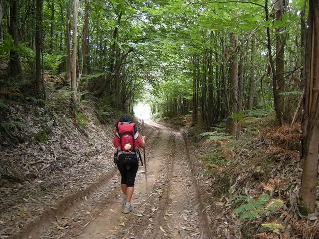 Excursión por la naturaleza