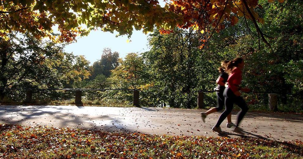 _jogging_654fb74e