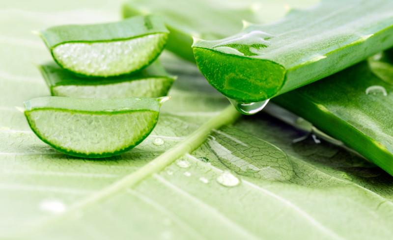 10 beneficios de tomar Aloe Vera
