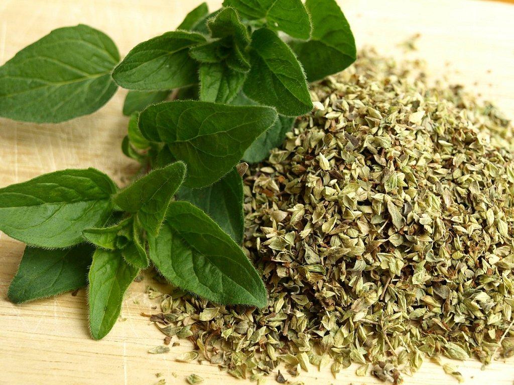 ¿Cuáles son las propiedades curativas del orégano?