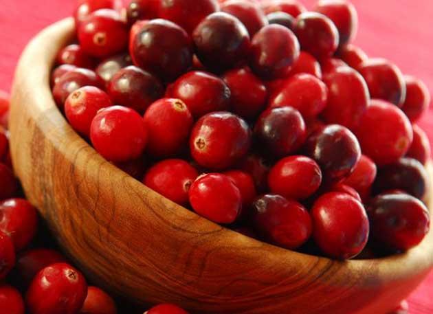 ¿Cuáles son las propiedades del arándano rojo para la salud?