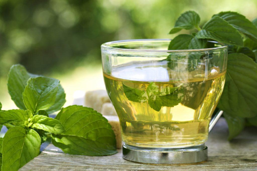 Bebidas para adelgazar: Té verde