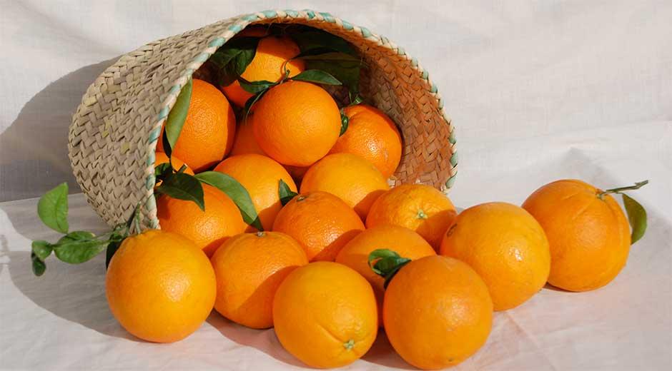 ¿Conoces los principales nutrientes de la naranja?