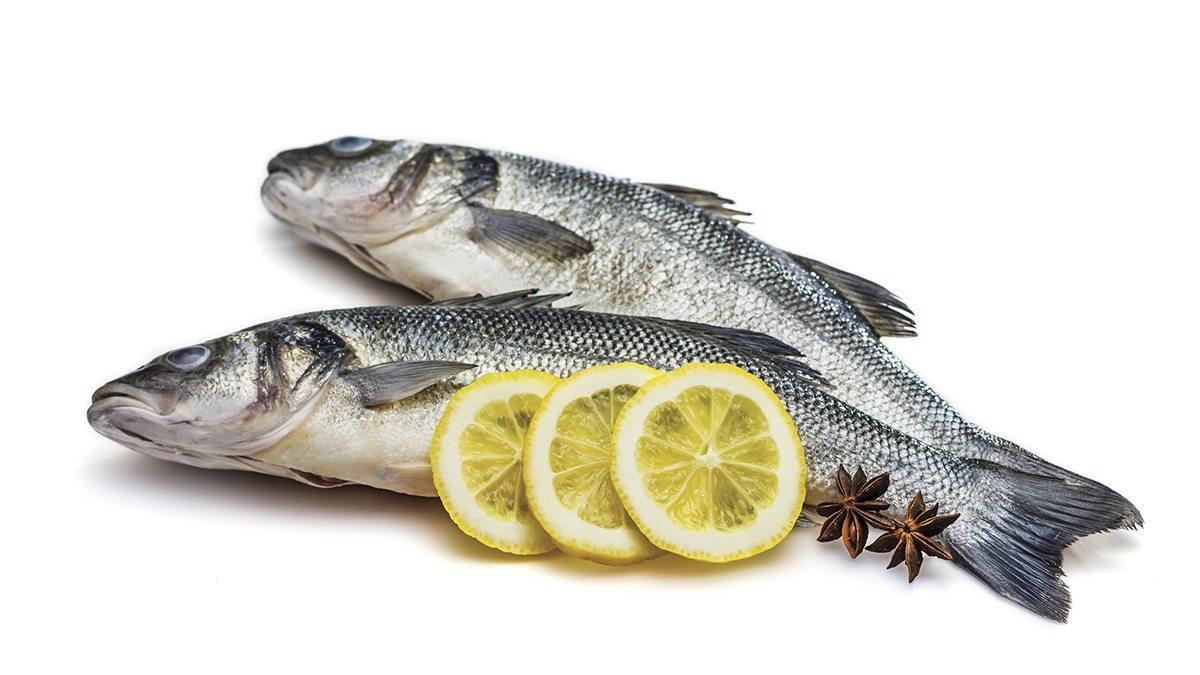 Pescado azul rico Omega 3
