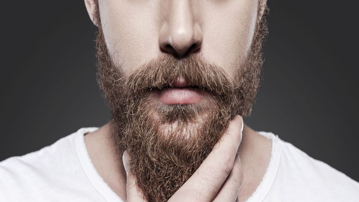 Resultado de imagen para De la barba