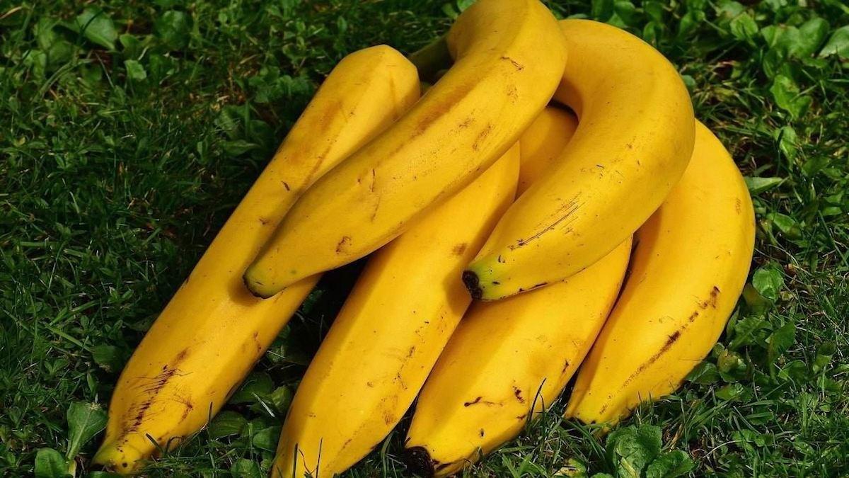 alimentos para aumentar las hormonas masculinas