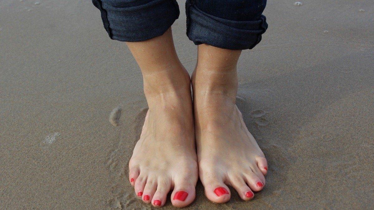que es un mirada de galliforme linear unit los dedos de los pies