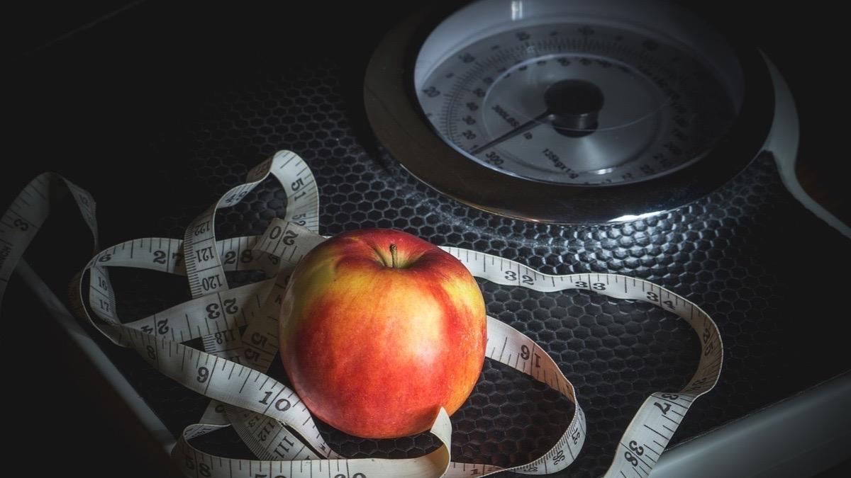 Magnesio alimentos se el que wikipedia encuentra en