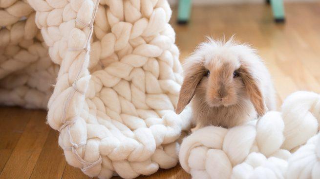 Vuelve el punto a lo grande Knitting Noodles