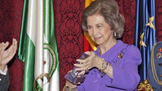 La Reina recibe el premio en nombre de la Fundación / Gtres