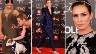 Las 7 curiosidades de la alfombra roja de los premios Goya 2018 / Gtres
