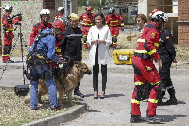 Doña Letizia, reina al rescate